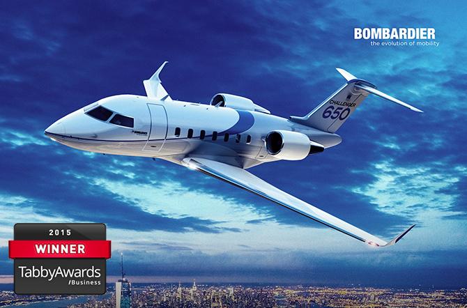 Bombardier tabby4